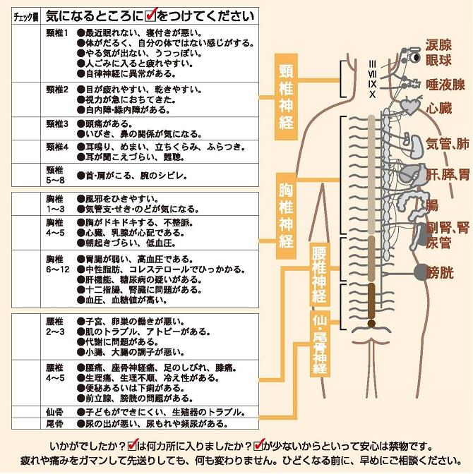 体の痛み、腰痛肩こり専門整骨院・整体院