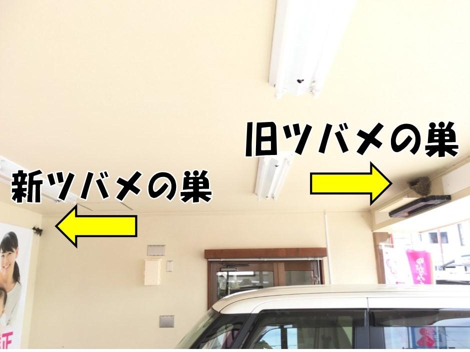 女性の悩み・右京区・西京区
